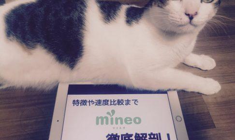 【mineo(マイネオ)】特徴や速度比較まで徹底解剖!
