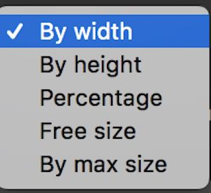 PhotoBulk リサイズ