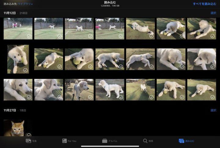 iPad Proに取り込みたい写真・動画を選択する