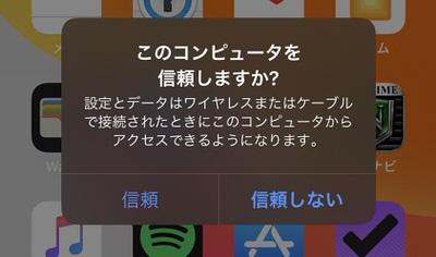 iPhoneの「信頼」をタップ