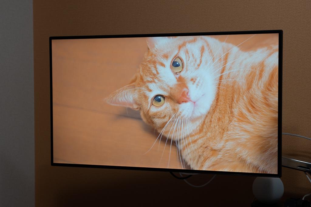Apple TV Infuse Pro 6で4Kビデオを再生