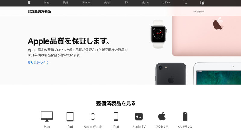 apple-seibizumi-disadvantage